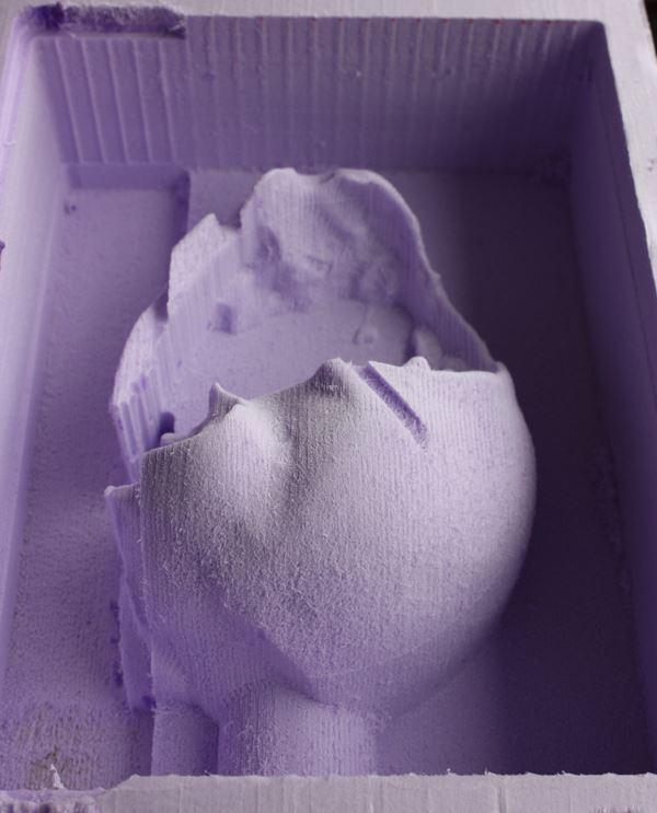 antoinebrodin-fablab2-birdy-vanneslechatel
