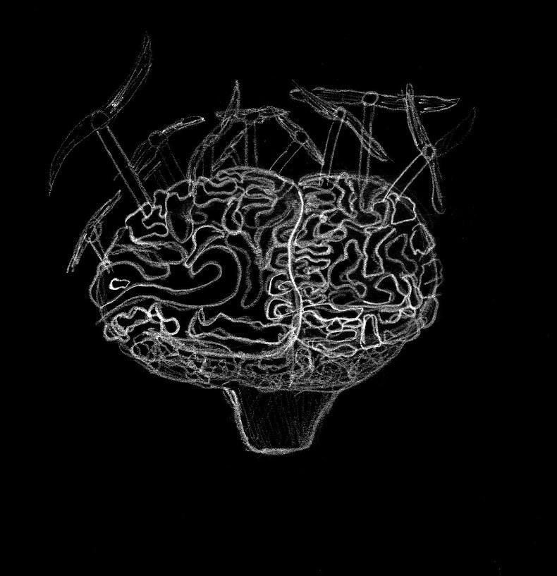sofiane-cerveau-dessin