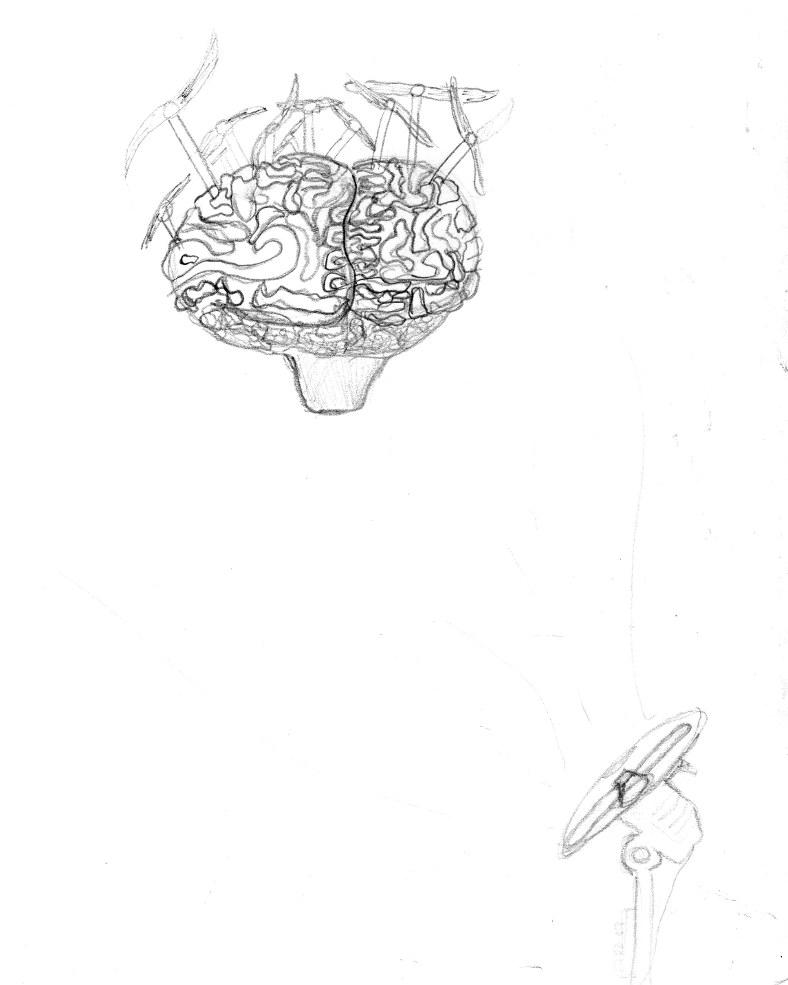 sofiane-cerveau-dessin1